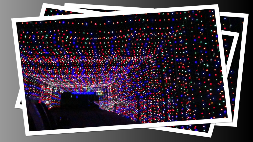 Glittering lights are back at the las vegas motor speedway for Motor speedway las vegas christmas lights