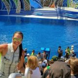 No trip to San Diego is complete without a visit to SeaWorld (Article & Video)